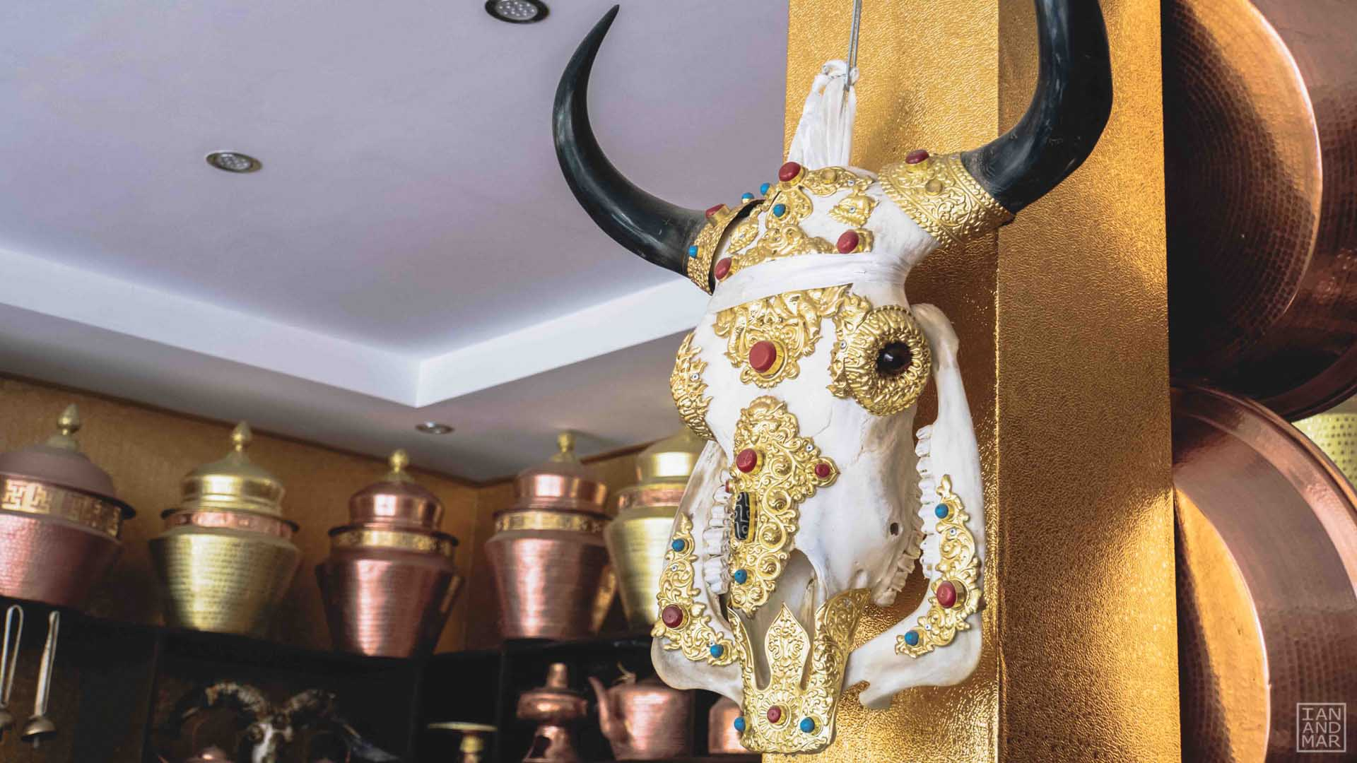 yak skull with gold hanging on a wall